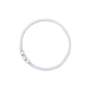 OSRAM fc55w/840 Kruhové zářivky