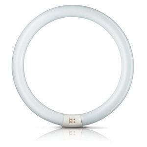 Philips tl-e22w/865 Kruhové zářivky