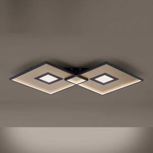 Paul Neuhaus Stropní svítidla